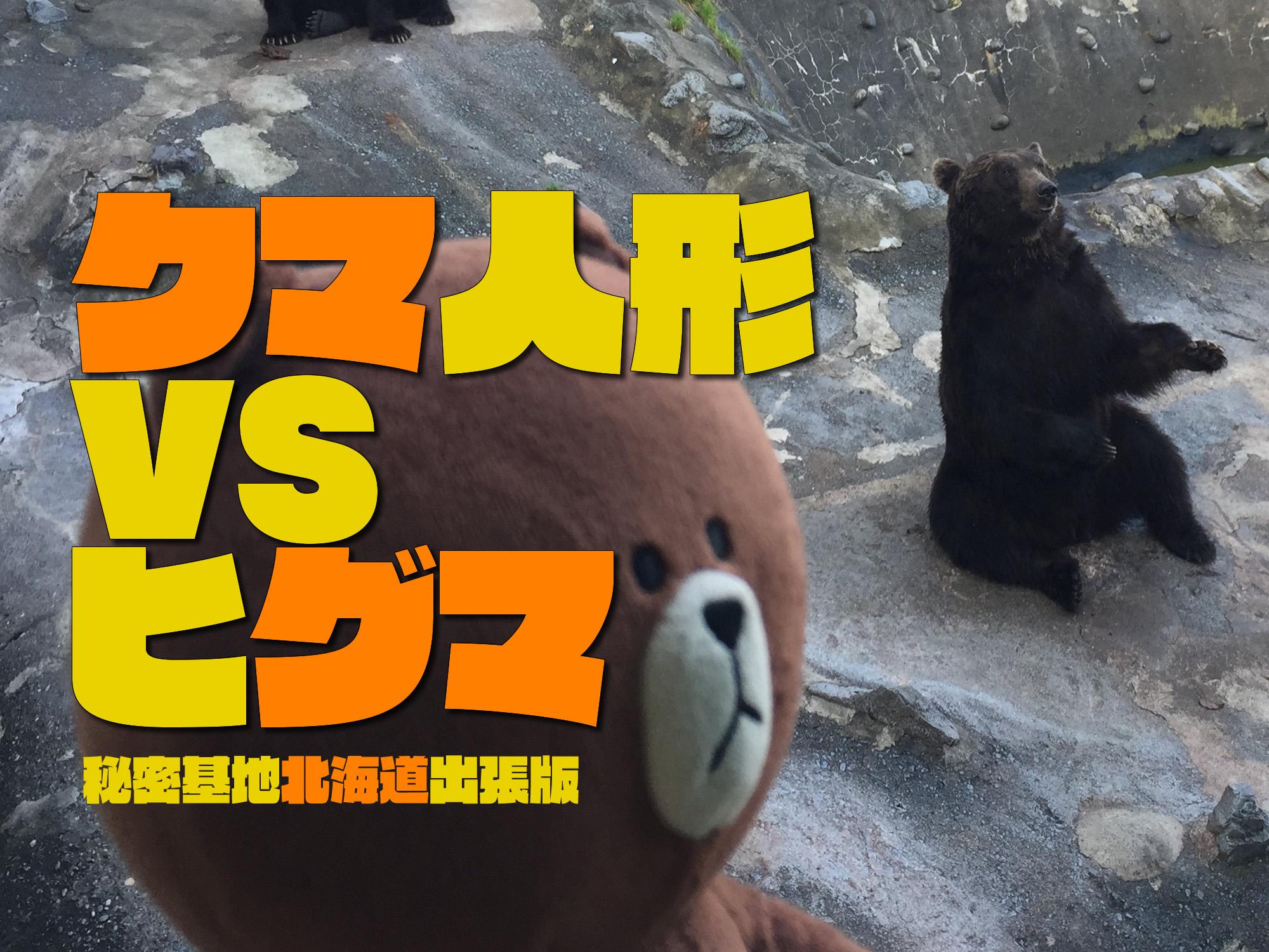 《世紀の対決》クマ人形とヒグマ果たして勝つのはどっちだ?