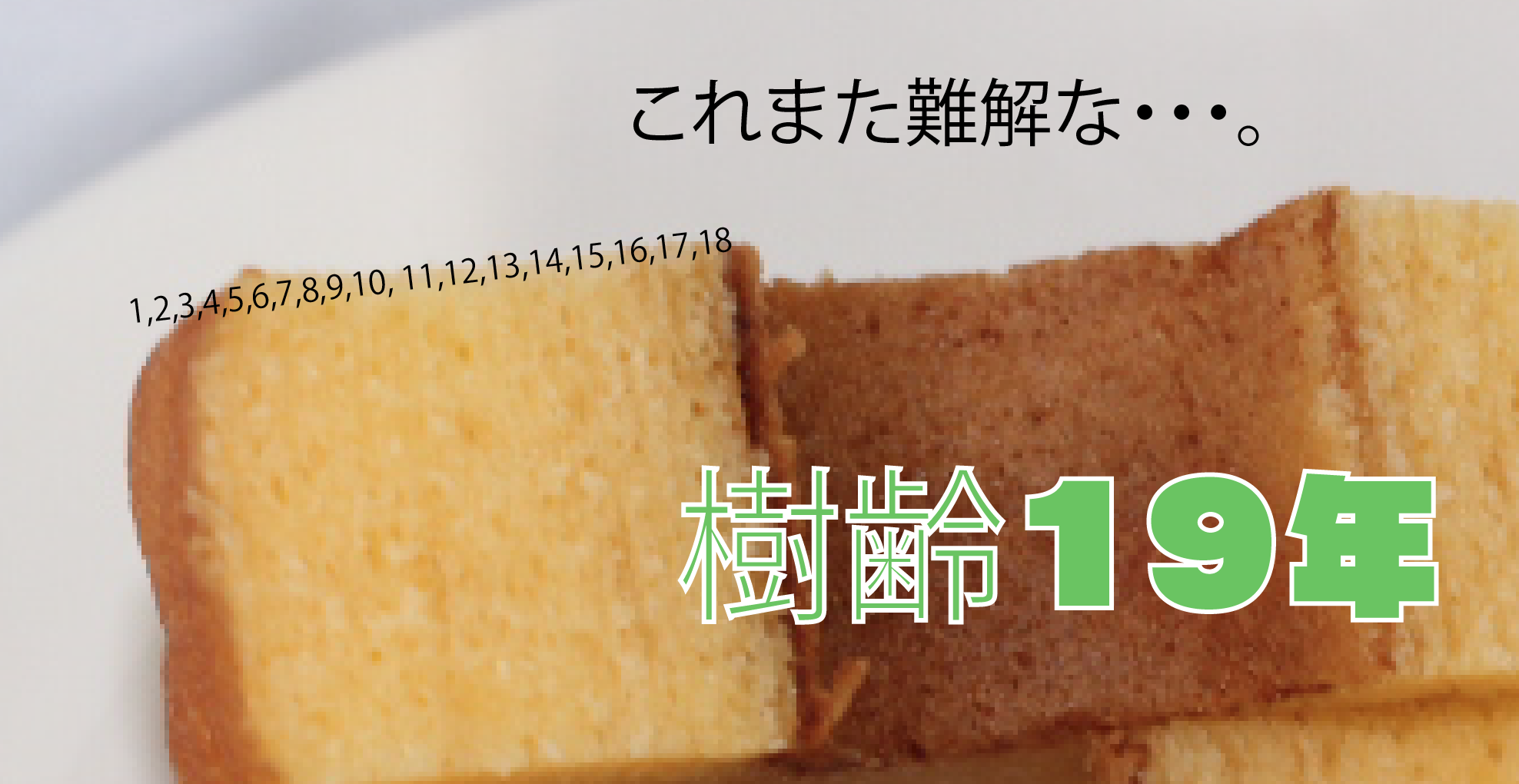 スクリーンショット 2015-11-19 16.50.56