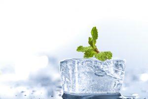 冷蔵庫に入れた食品が凍る原因と対策とは